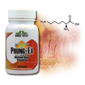 Inno-vita Phung-Ex™ -- 60 veggie capsules - Remove Spore Organism